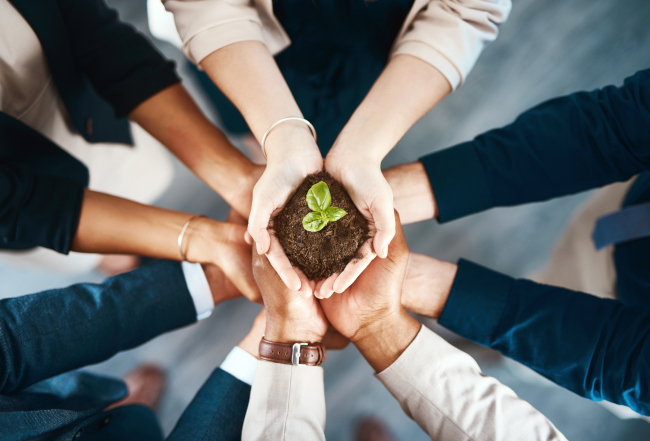 5 Reasons Every Company Needs a Sustainability Committee