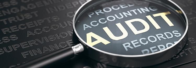 annual audit